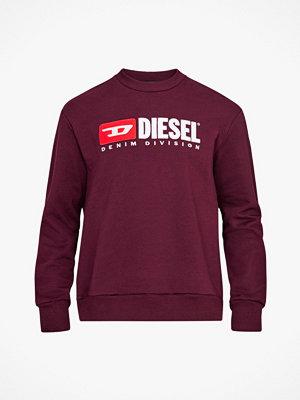 Diesel Sweatshirt F Crew-Division