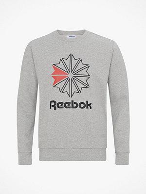 Reebok Classics Sweatshirt Classics French Terry Big Iconic