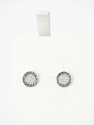 Dyrberg/Kern smycke Örhänge Alecia