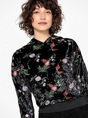 La Redoute Sweatshirt i sammet