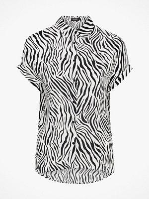 Soaked in Luxury Blus Oline Zebra Top SS