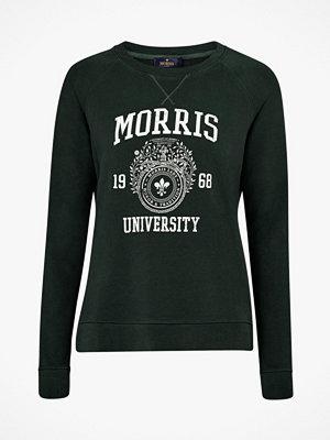Morris Sweatshirt Ivy