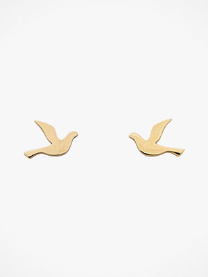 Edblad smycke Örhängen Dove Studs Small