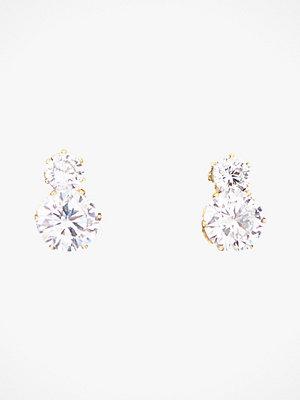 Edblad smycke Örhängen Crown Studs Double Gold