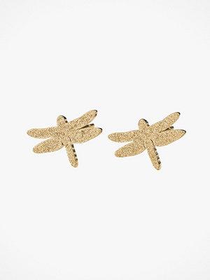 Edblad smycke Örhängen Dragonfly Studs Sparkle Gold