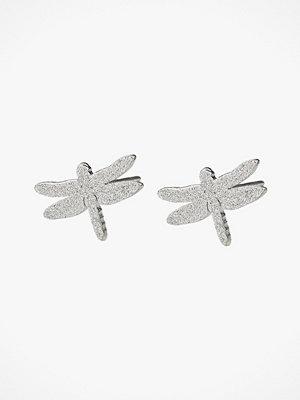 Edblad smycke Örhängen Dragonfly Studs Sparkle Steel