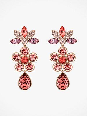 Lily and Rose smycke Örhängen Aurora Earrings