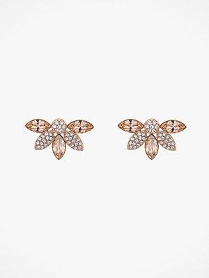 Lily and Rose smycke Örhängen Lucia Earrings
