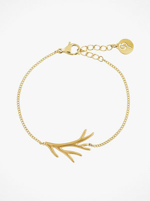 Edblad smycke Branch Bracelet Matt Gold