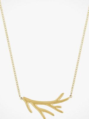 Edblad smycke Halsband Branch Necklace Short Matt Gold