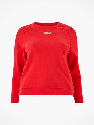 Levi's Plus Sweatshirt PL Relaxed Graphic Crew Plus F