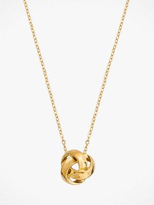Edblad smycke Halsband Gala Necklace Gold