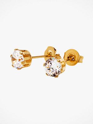 Edblad smycke Örhängen Crown Studs Gold