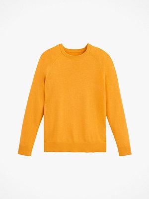 Tröjor - La Redoute Finstickad tröja i bomullsblandning med rund halsringning