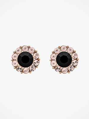 Lily and Rose smycke Örhängen Miss Sofia Earrings