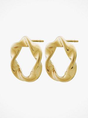 Edblad smycke Örhängen Swirl Studs Gold