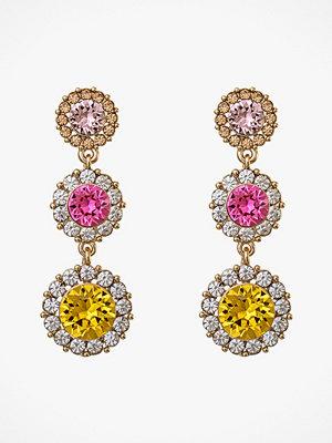 Lily and Rose smycke Örhängen Sienna Earrings