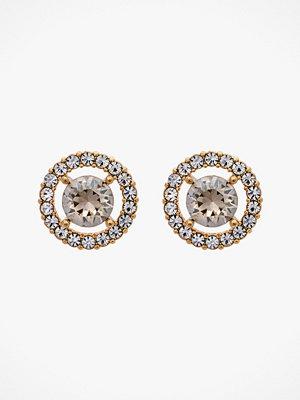 Lily and Rose smycke Örhängen Miss Miranda Earrings