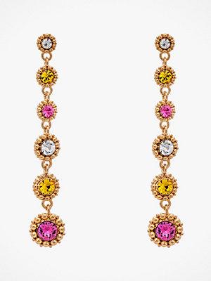 Lily and Rose smycke Örhängen Petite Celeste Earrings