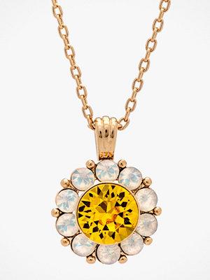 Lily and Rose smycke Halsband Sofia Necklace