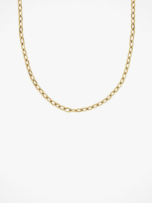 Edblad smycke Halskedja Chain Linked Medium 40 cm Gold