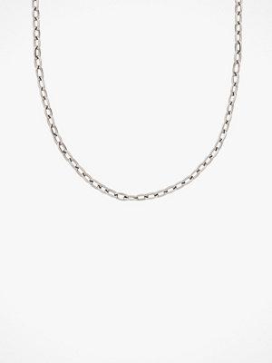 Edblad smycke Halskedja Chain Linked Medium 40 cm Steel
