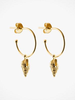 SOPHIE By SOPHIE smycke Örhängen Shell Mini Hoops