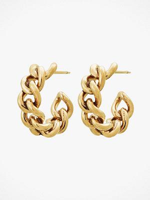 Edblad smycke Örhängen Lourdes Chain Creole Earrings Gold