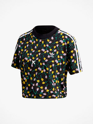 Adidas Originals Topp Allover Pront Crop Top