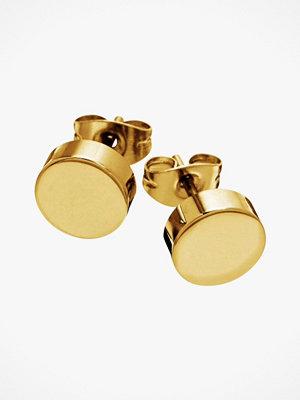 Edblad smycke Örhängen Dottie Studs Gold