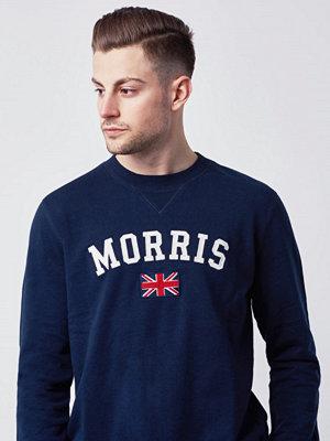 Tröjor & cardigans - Morris Brown Sweatshirt 60 Navy