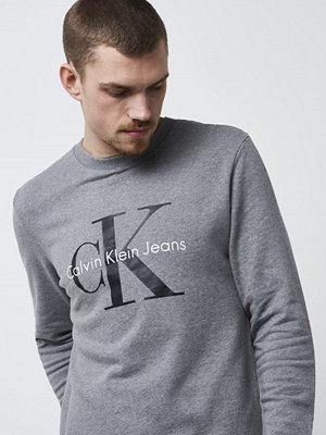 Calvin Klein Jeans Crewneck HWK 025 Grey