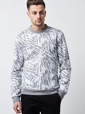 Calvin Klein Kally 033 Medium Grey