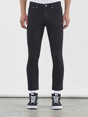 William Baxter Ted Cropped Black