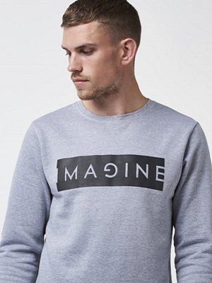 Tröjor & cardigans - Speechless Imagine Sweater Grey Melange