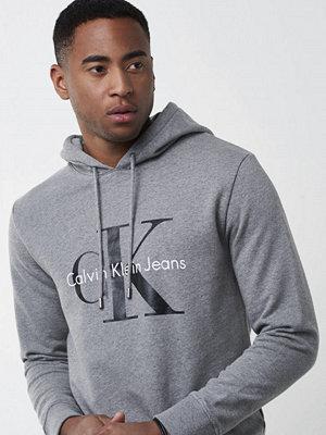 Calvin Klein Jeans True Icon Hoodie 038 Grey