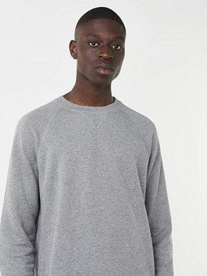 Tröjor & cardigans - WESC Marvin Solid Raglan Grey Melange