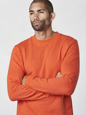 Studio Total Oliver Sweater Orange