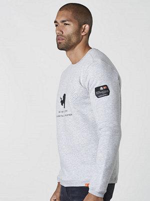 Sail Racing Antarctica Sweater 925 Grey Melange