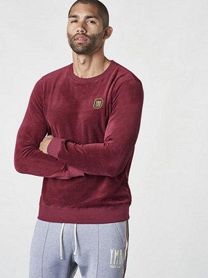 Tröjor & cardigans - YMR Track Club 1984 Plush Sweatshirt Wine Red