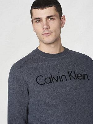 Calvin Klein Jeans Kasma 2 French Terry logo Dark Grey