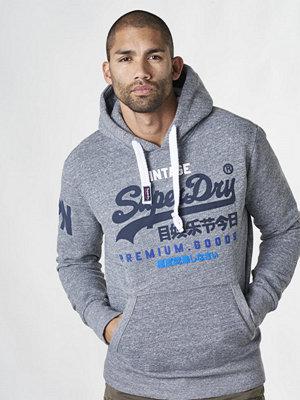 Street & luvtröjor - Superdry Premium Goods TRI Hood Cliff Face Grey
