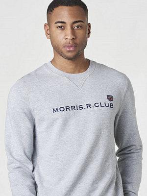Tröjor & cardigans - Morris Louis Sweatshirt 91 Grey