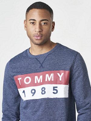 Tröjor & cardigans - Tommy Jeans TJM Basic Logo CN L/S11 002 Black Iris