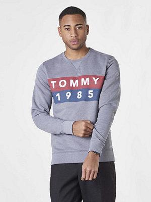 Tröjor & cardigans - Tommy Jeans TJM Basic Logo CN L/S11 038 Light Grey Heather