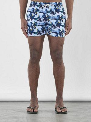 Badkläder - Knowledge Cotton Apparel Palm Printed Swimshorts Skyway