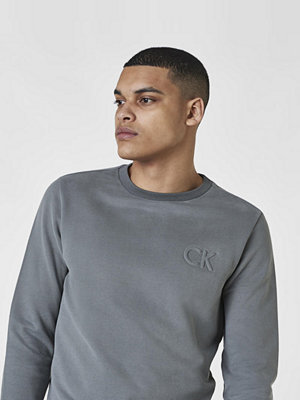 Calvin Klein Kapler Sweat Gun Metal