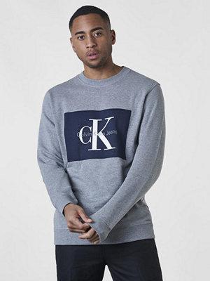 Calvin Klein Jeans Hotoro Light Grey