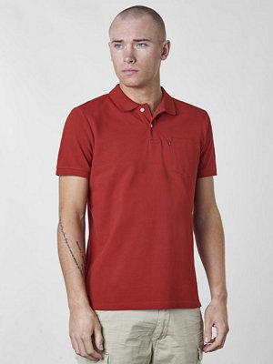 Pikétröjor - Lexington Quentin Polo Pompeian Red