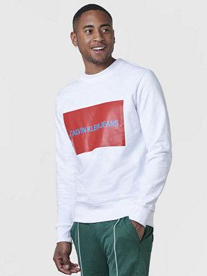 Tröjor & cardigans - Calvin Klein Jeans Institutional Box logo Sweatshirt 112 White